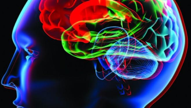 Medicii au folosit un creier tridimensional pentru a trata o boala grava (VIDEO)