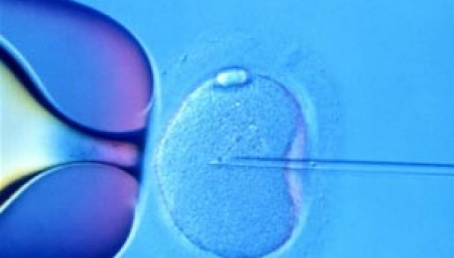 Tratamentele pentru fertilitate ameninta structura umana, avertizeaza pionierul fertilizarii in vitro Robert Winston