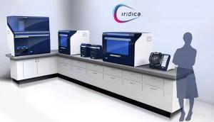 iridica 1