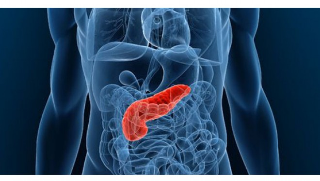 Dieta care imită postul regenerează pancreasul diabetic – studiu