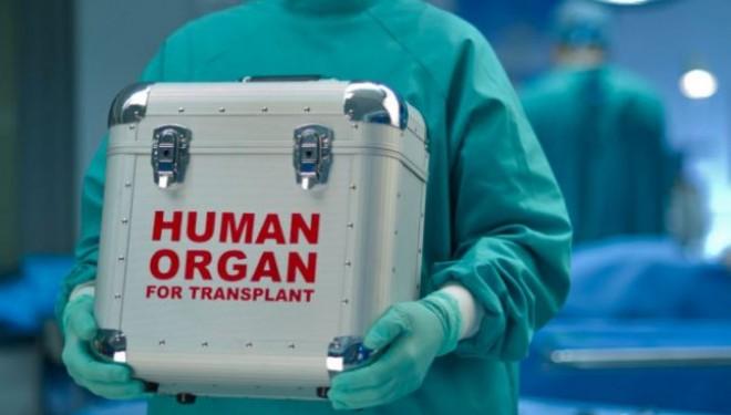 Primul transplant de cap din lume ar putea fi realizat peste doi ani