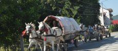 În plină epidemie de rujeolă, romii nomazi tranzitează nestingheriţi Bistriţa
