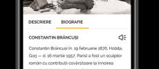 Comunicat de presă – IT-ştii români de pretutindeni lansează o aplicaţie mobilă în cinstea Centenarului
