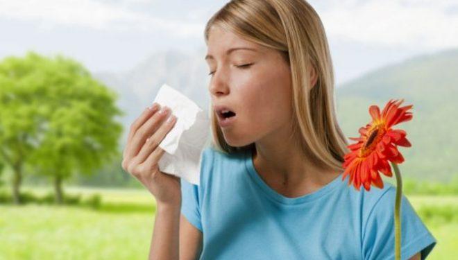 Alergia la praf – Cum se manifestă şi cum o ameliorăm