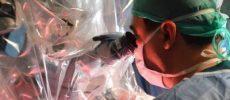 Cancerul de prostată poate fi tratat cu succes prin chirurgia robotică. Care sunt avantajele