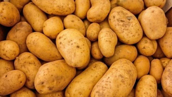 Ce boli trateaza cartoful. Cum să îl foloseşti