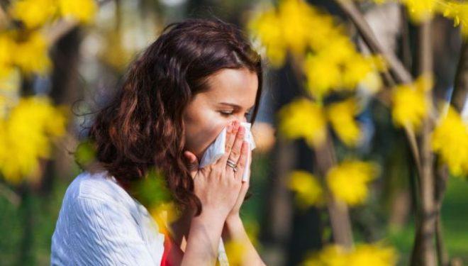 Alergia la ambrozie şi firul de iarbă, agresive vara