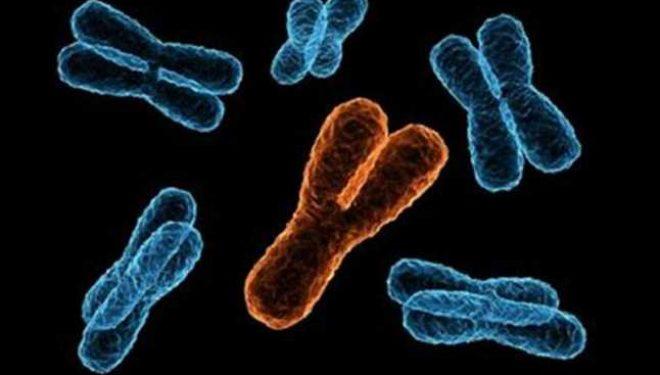 Rezultatele surprinzătoare ale unui studiu: o anomalie genetică considerată rară, descoperită la un număr mare de persoane sănătoase