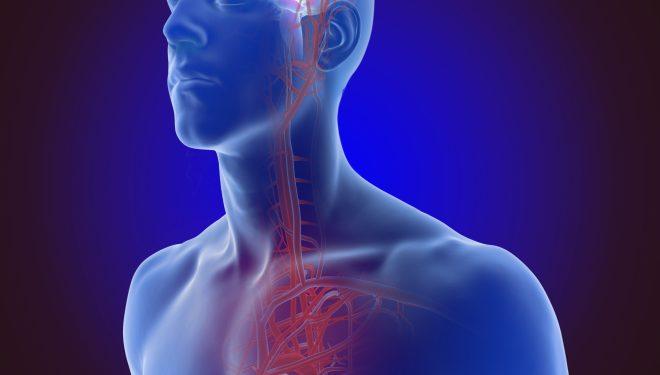 Cum recunoaștem o persoană care tocmai a suferit un accident vascular cerebral. Boala afectează inclusiv tinerii