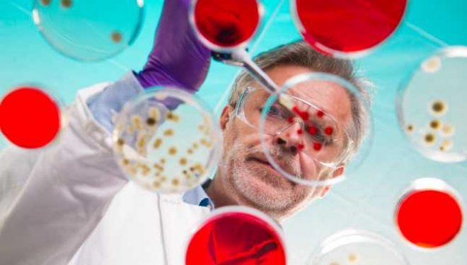 Bacterii care se hrănesc exclusiv cu CO2 au fost dezvoltate de cercetătorii israelieni