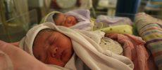 Timișoara. 10 nou-născuți, infectați în maternitate cu coronavirus
