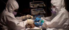 Peste jumătate dintre pacienţii cu coronavirus au dezvoltat disfuncții ale inimii. Studiu