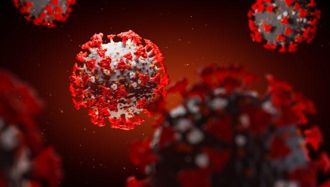 Avertisment OMS despre sezonalitatea coronavirusului: Acest virus iubeşte toate anotimpurile